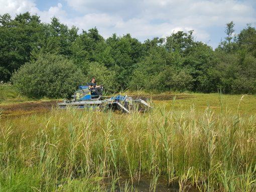 Het maaien van de trilvenen en moerassen in Westbroek en Molenpolder